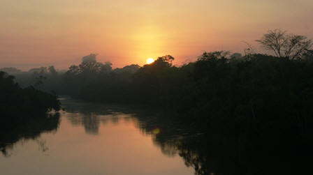 Sunset over Amazon Jungle
